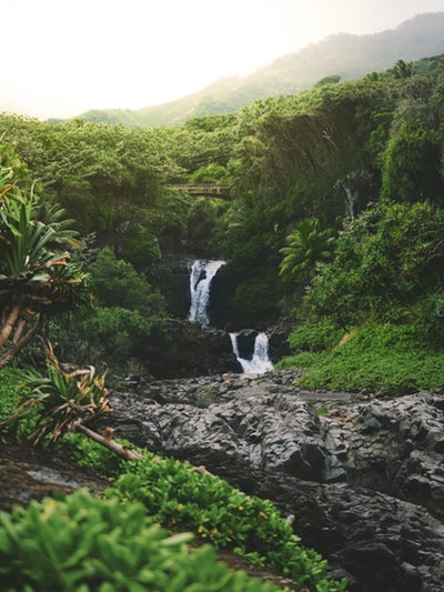 Waterfall in Hawaii, My homebirth and eating raw placenta
